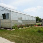 This is the external view of the greenhouse.  You can also see we have a rain garden to capture rainwater from the roof of the greenhouse.