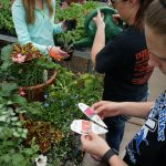 Students ensure all plants are properly marked.