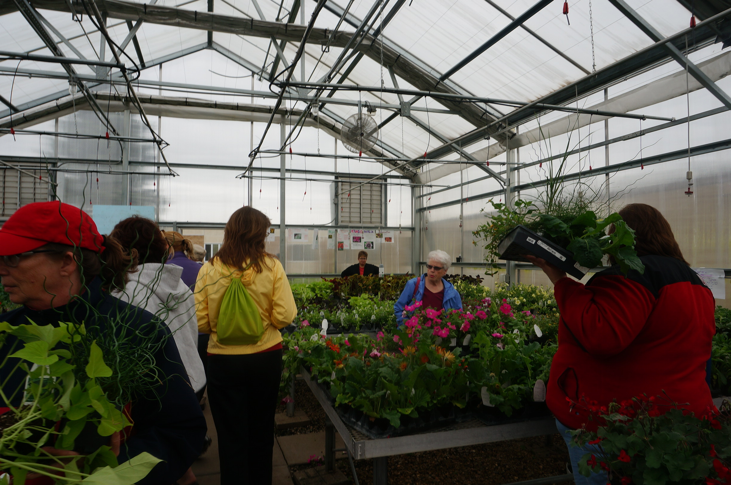 Greenhouse – Sauk Prairie FFA on green lavender, green beets, green bonsai, green bushes, green perennial, green garden design, green flowers, green tulips, green nature, green gardening, green shrubs, green butternut squash,